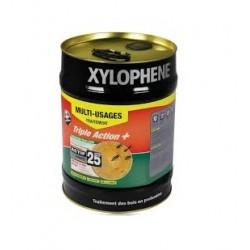 Traitement bois Xylophène...
